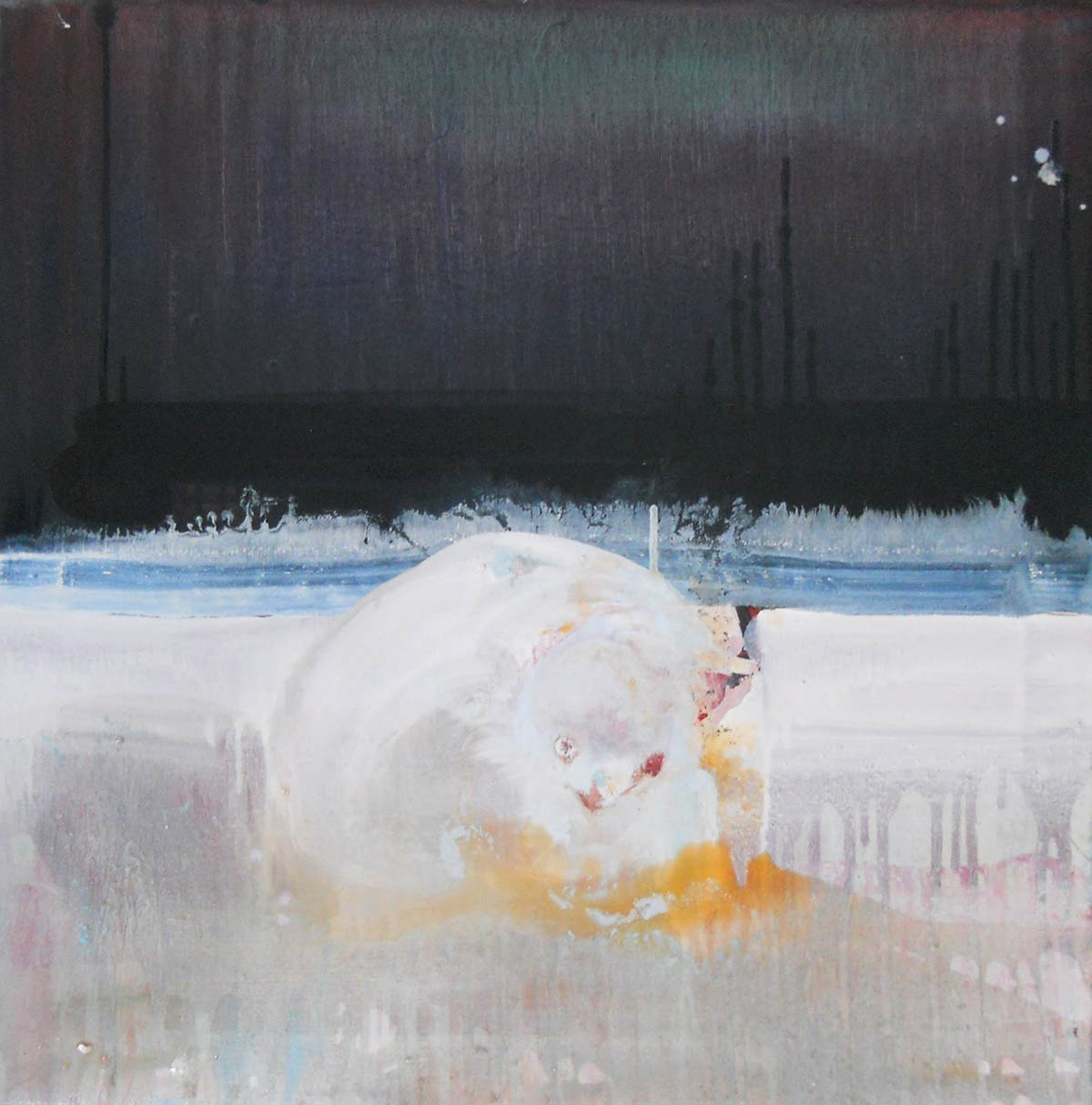 exotic arctic animal, 2012 50 x 50cm, Oil on canvas