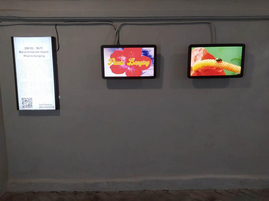 Vegetal porn project in Berthold center 2020.