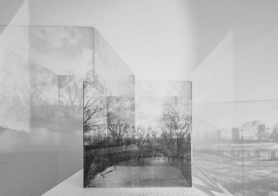 Perceptual Grounds Joanna Pianka & Veronika Suschnig
