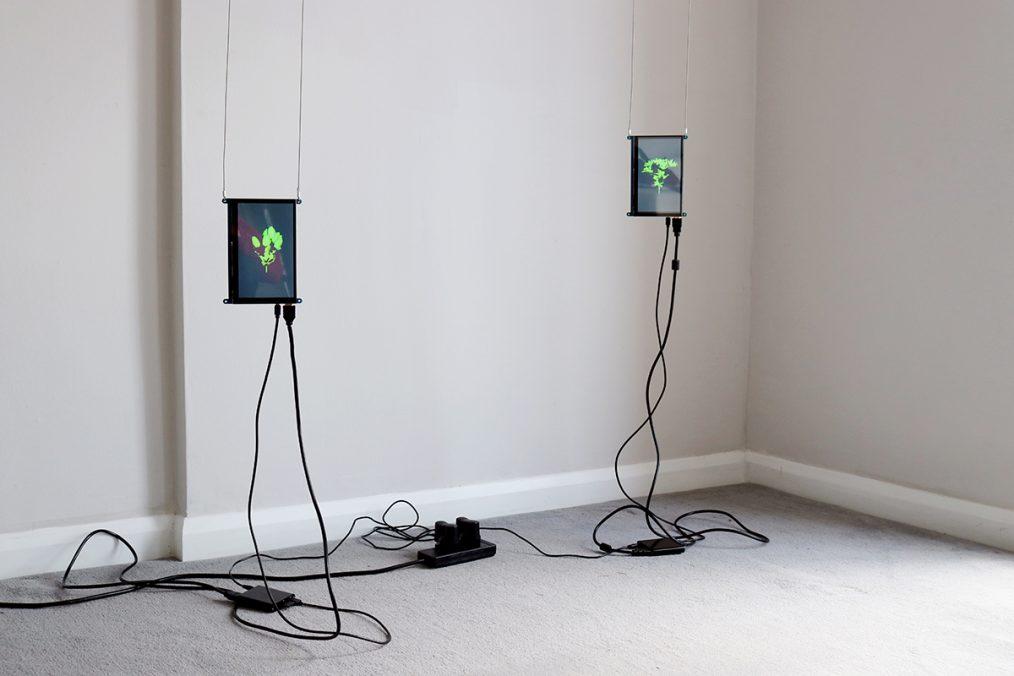 """Simulacraceae . 7"""" LCD screens, looped HD videos, 00:02:00 2021"""