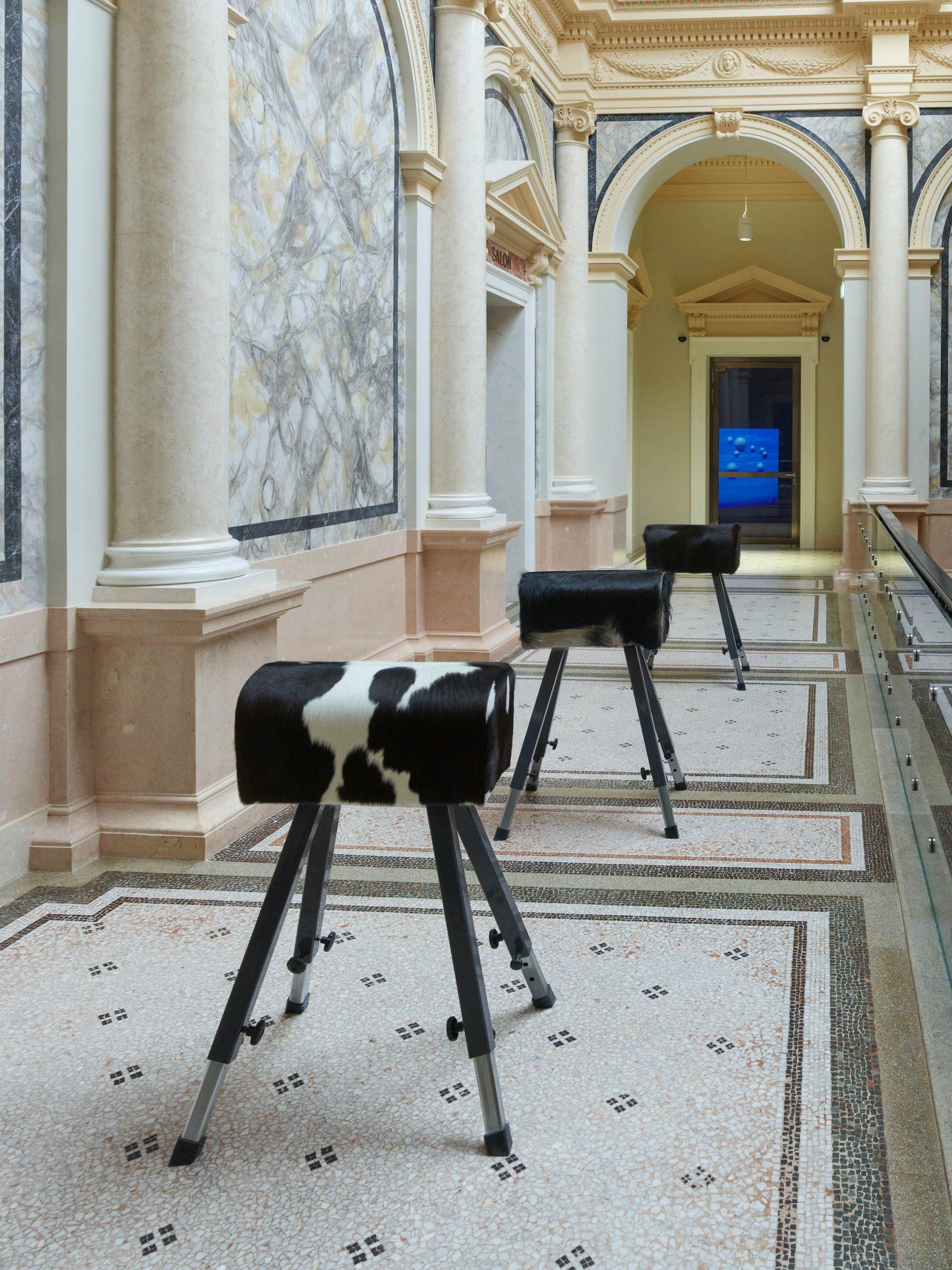 Maja Smrekar 96% of all Mammals on Earth Are Humans and Livestock, 2020 Fell bezogene Turnböcke Installationsansicht Foto: Pascal Petignat
