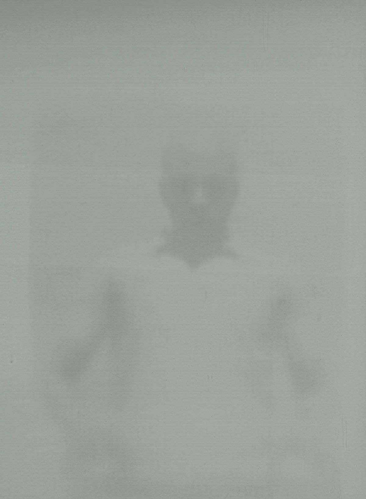 Maximiliane Leni Armann, Brian