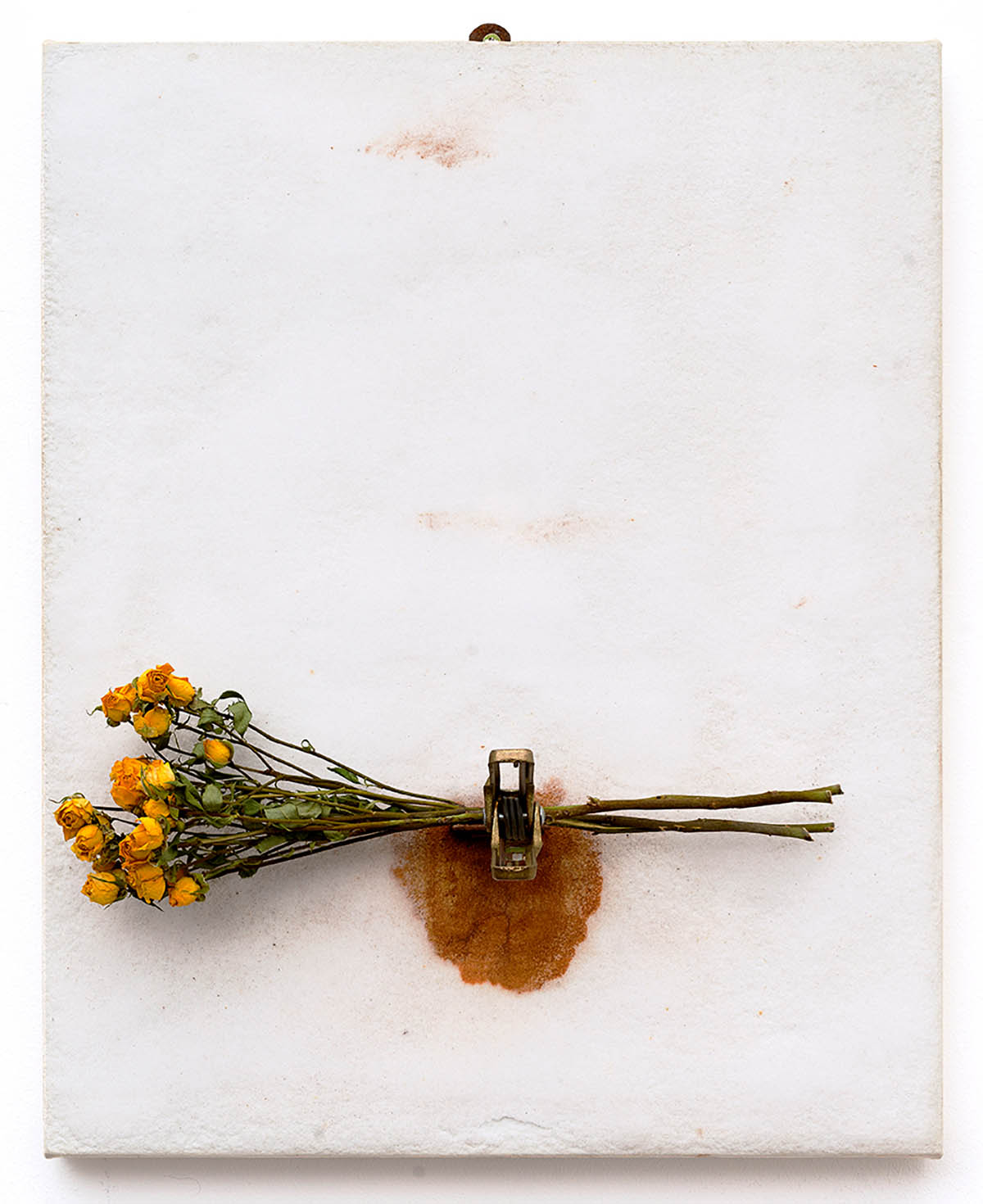 Pier Paolo CALZOLARI, Studio, 1986. Salt, iron, bouquet of roses on paper applied on wood, 51 x 41 x 11 cm. Photo by Daniele de Lonti, Courtesy of Repetto Gallery, London. Section: Established Masters