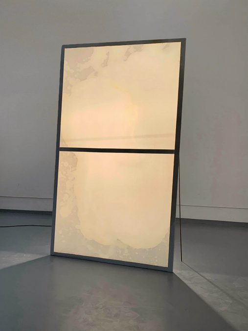 Öl auf Leinwand, 220x135cm, 2020