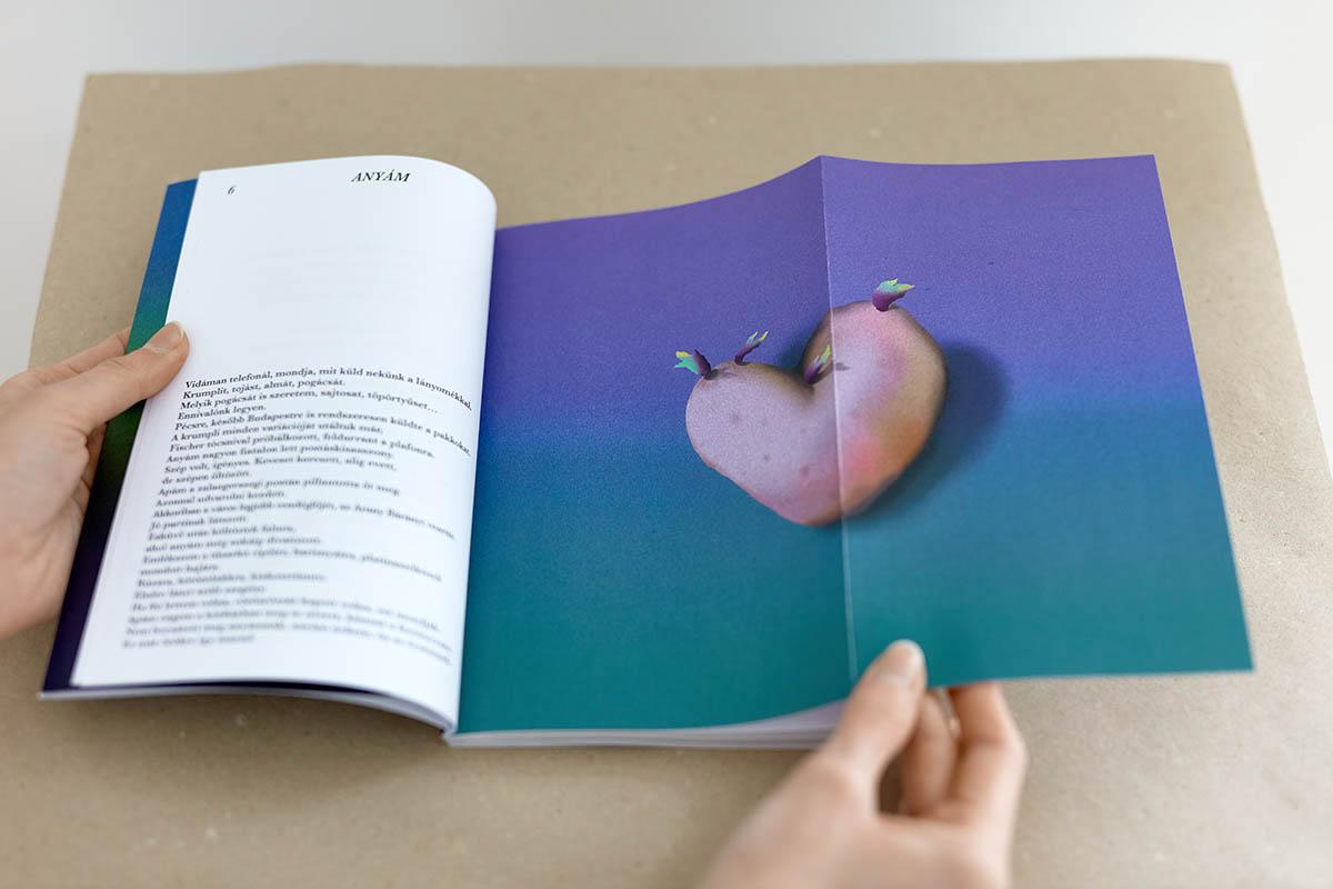 Judit FISCHER_Klára Németh_It is not an Acaica, with Judit Fischer illustrations 2021,book,150 copies