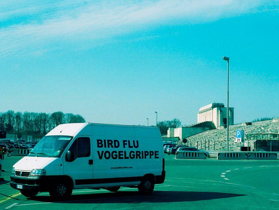 Stefano Cagol: Bird Flu / Vogelgrippe